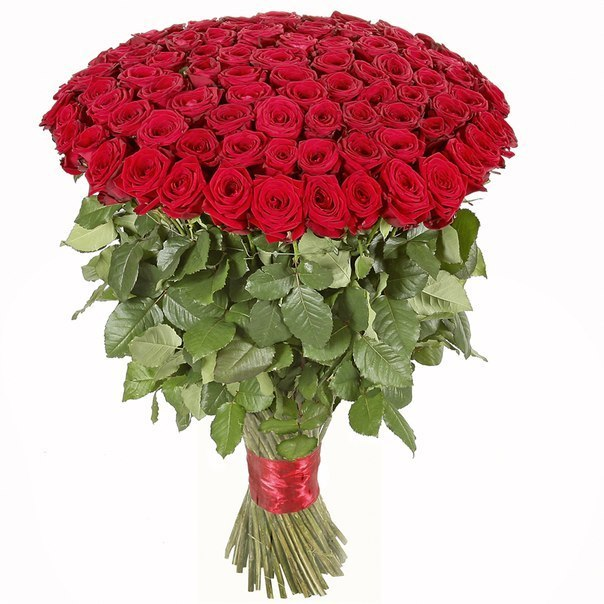 скачать картинку букет роз